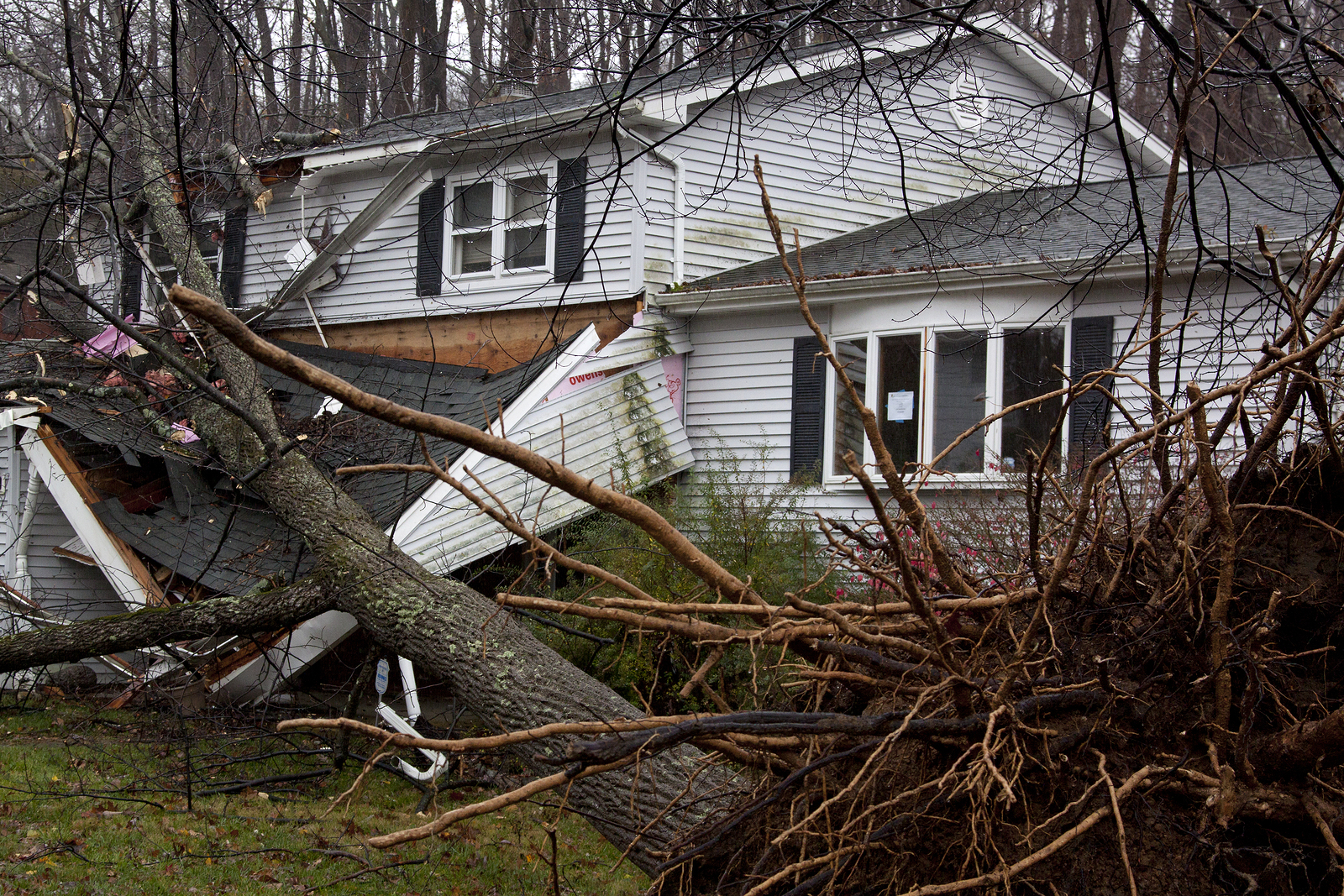 Storm Damage Home and Business Repair Cookeville